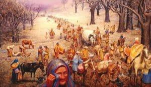 andrew jackson native americans trail of tears
